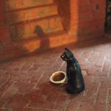 Costruzione 43: Il gatto nero - 1